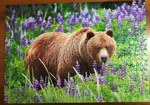Castorland. Bear on the meadow. Медведь на лугу. 500. Арт. В-52677.JPG
